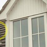 roof leaks austin